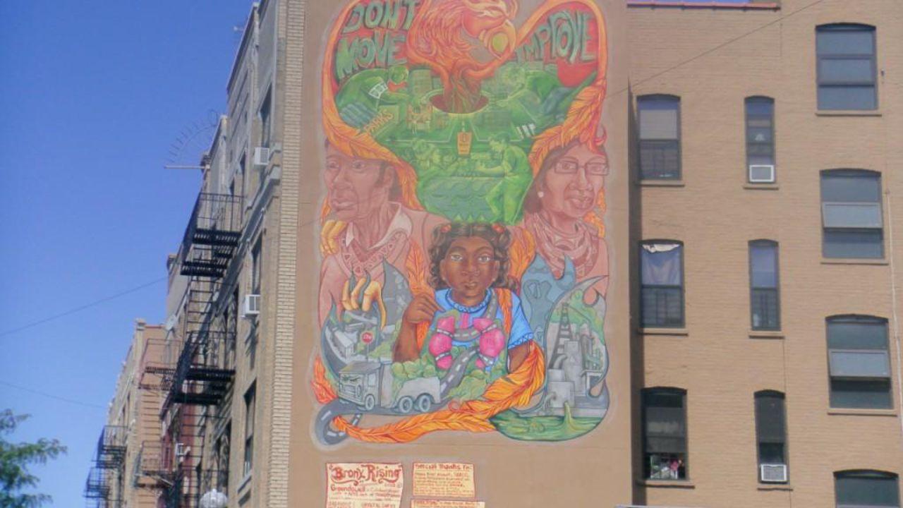 Bronx Rising